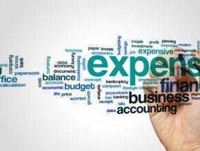 claim expenses ltd company